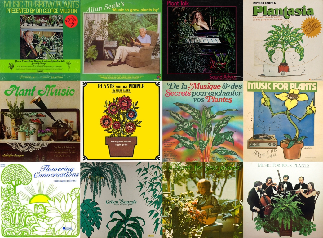 Music for Plants, Compilation.jpg